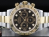 Rolex|Cosmograph Daytona|116503