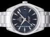 Omega|Seamaster Aqua Terra 150M Master Co-Axial|231.10.39.21.03.002