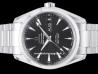 Omega|Seamaster Aqua Terra 150M Annual Calendar Co-Axial|231.10.39.22.01.001