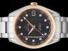 Omega|Seamaster Aqua Terra 150M Co-Axial|231.20.39.21.51.003