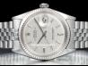 Rolex Datejust 36 Bark Silver/Argento Corteccia 1601