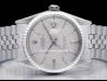 Rolex|Datejust 36 Bark Silver/Argento Corteccia|1603